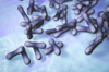 Diphtheria Toxin