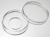35 mm Glass bottom dish with 20 mm micro-well #0 cover glass